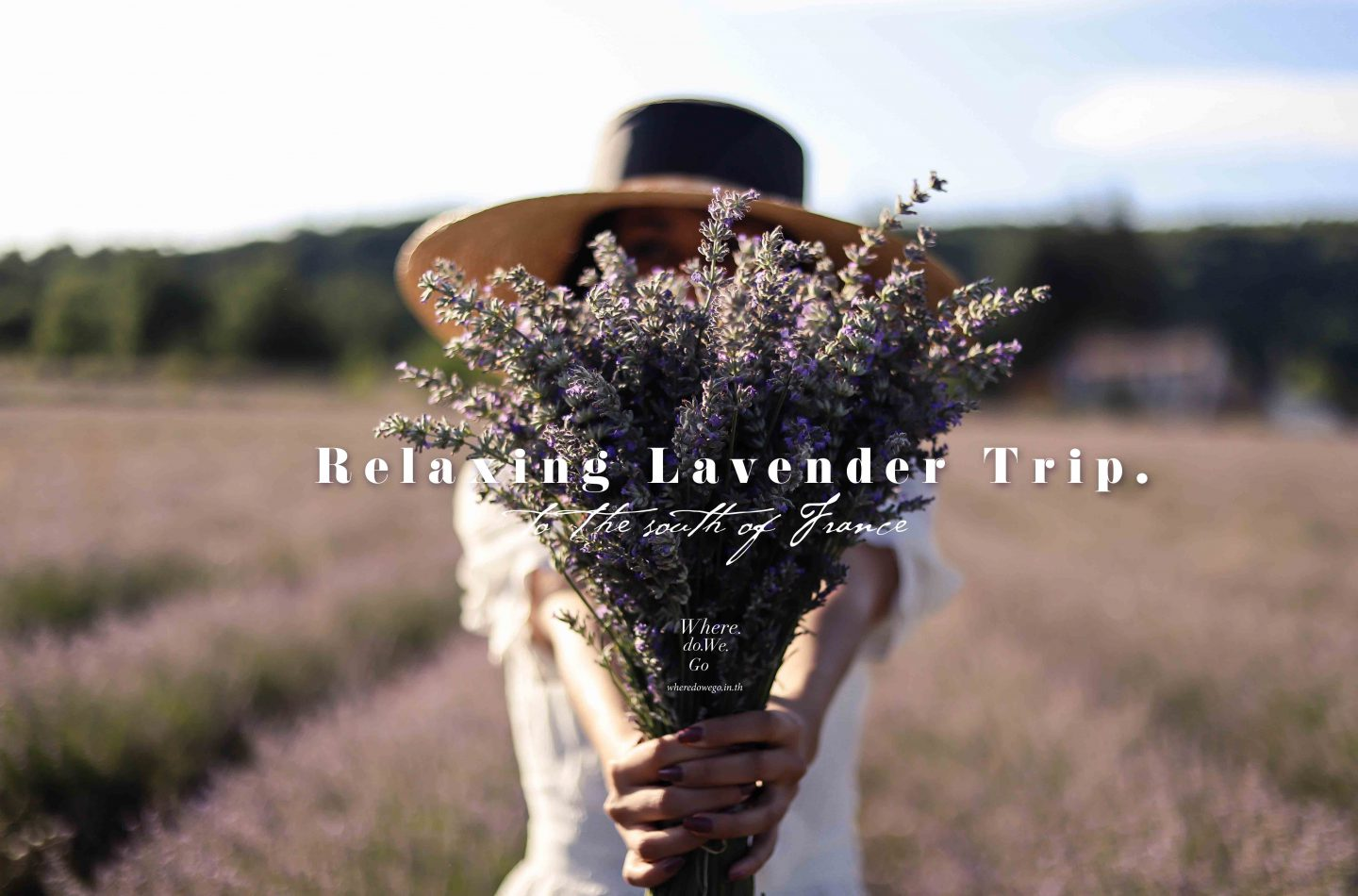Protected: To The South of France, Relaxing Lavender Trip