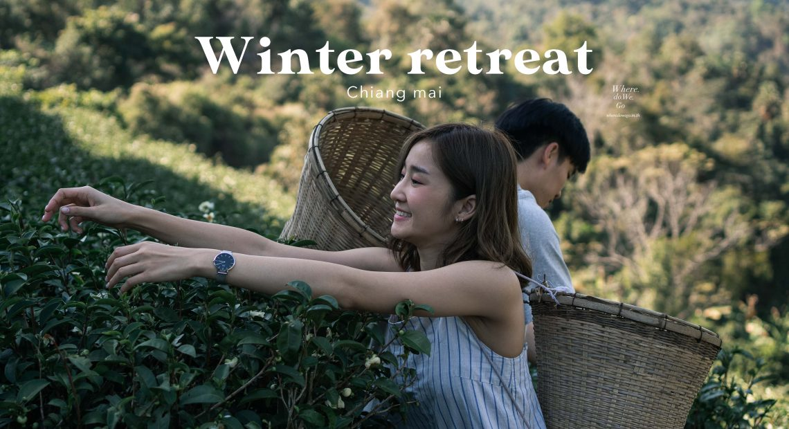 Winter Retreat in Chiang Mai
