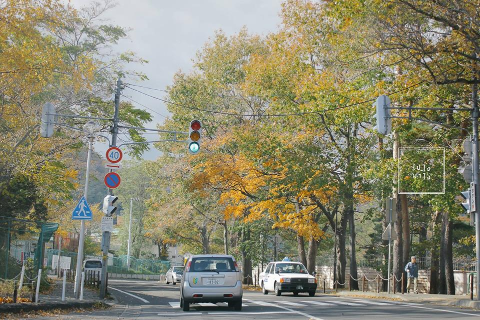 Family road trip to Hokkaido!