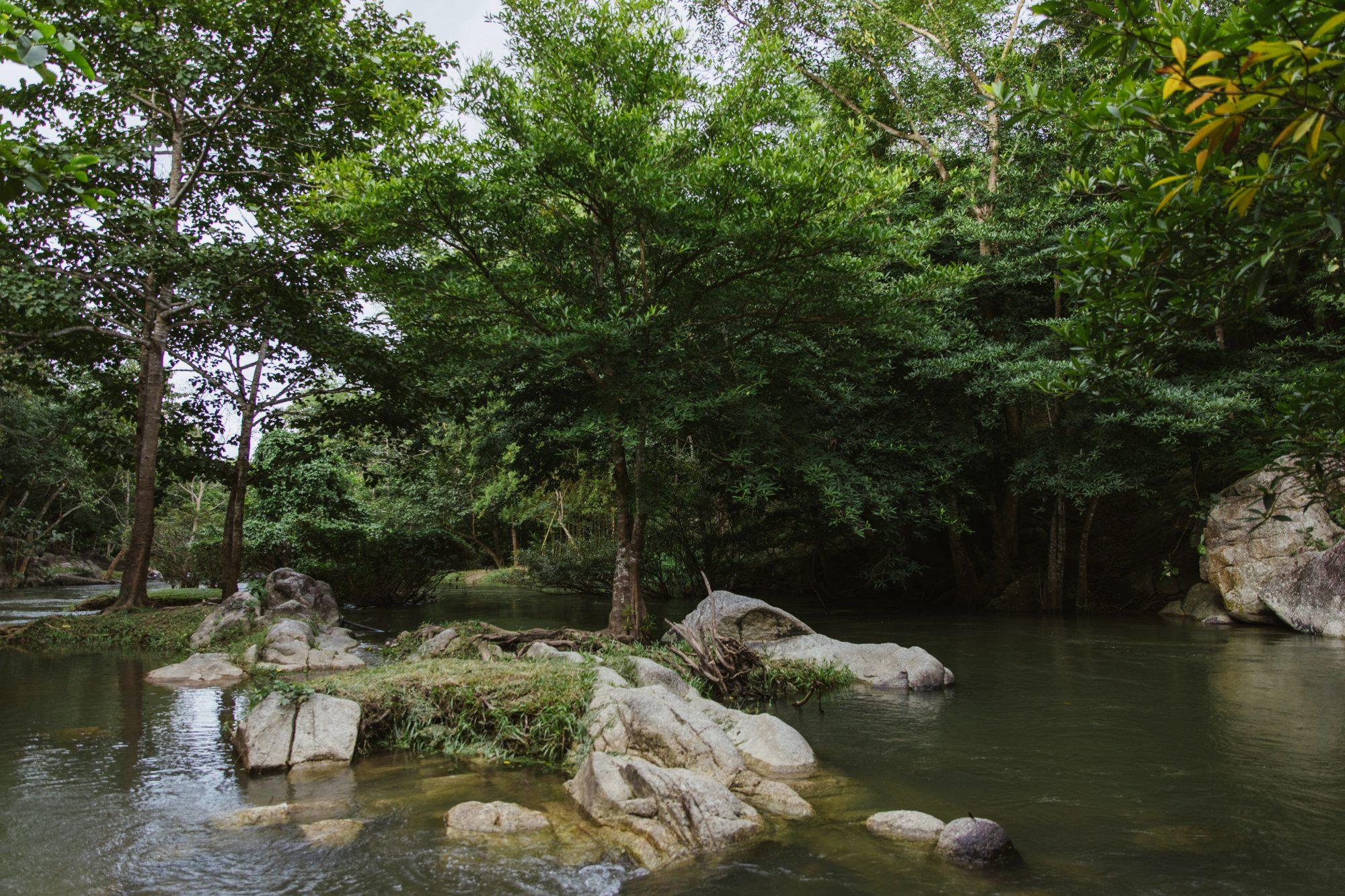3 วันในราชบุรีเที่ยวไม่เหนื่อย เน้นกินเก่งกับธรรมชาติสวย งานอาร์ตและฝูงลิง